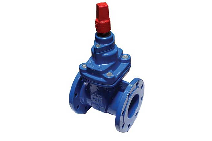 AAP appFLO Resilient Seat Gate Valves