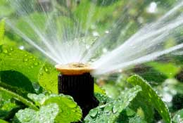 Sprinklers & Systems -  Irrigear